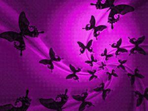 CHAI 3 år sommerfugle